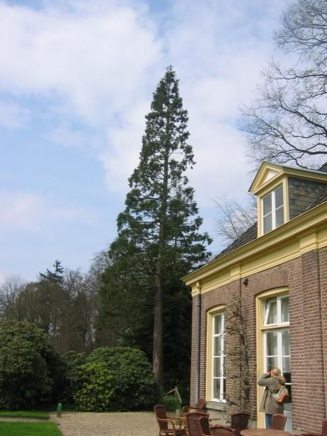 Huis Verwolde, photo par Ronald Gorter, 2006-04-19
