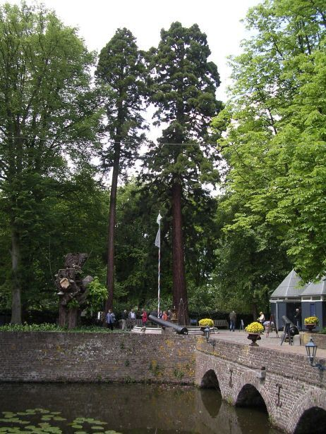 Castle garden, picture by Nardo Kaandorp, 2006-05-28
