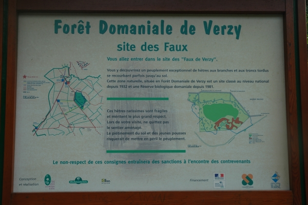 Le For�t Domaniale de Verzy, photo par WiPe, 2009-08-09