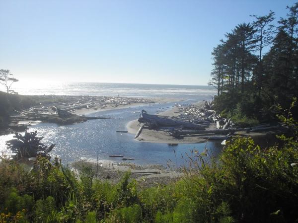 Olympic National Park, foto por Shaners Becker, 2006-11-10