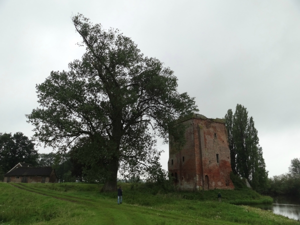 Ruins of castle Nijenbeek, photo par Larsvanderwal