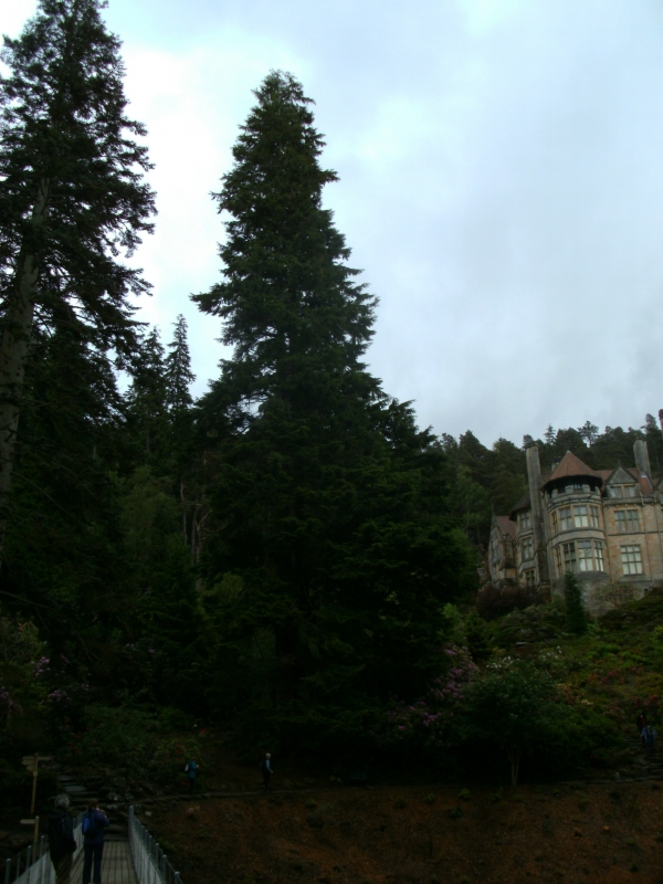 Cragside House, picture by 123RedRob