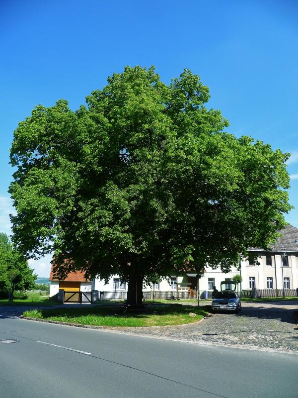 B176 direkt auf dem Dorfplatz, Bild von Manni57, 2014-05-20