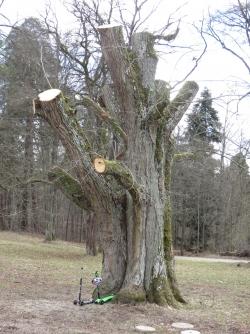 Willow Tree Figur// Du bist die Beste YOU ARE THE BEST 13 cm