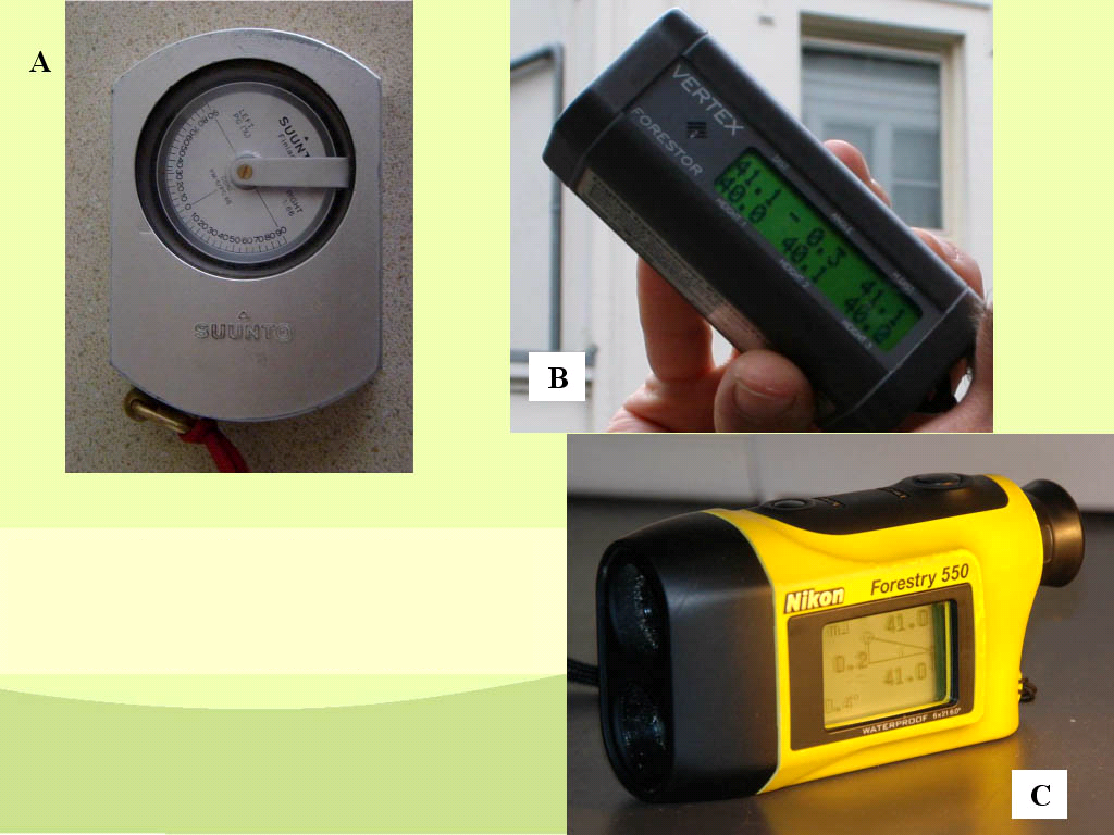 Examples Of Measurement Instruments : Exactly measuring tree height